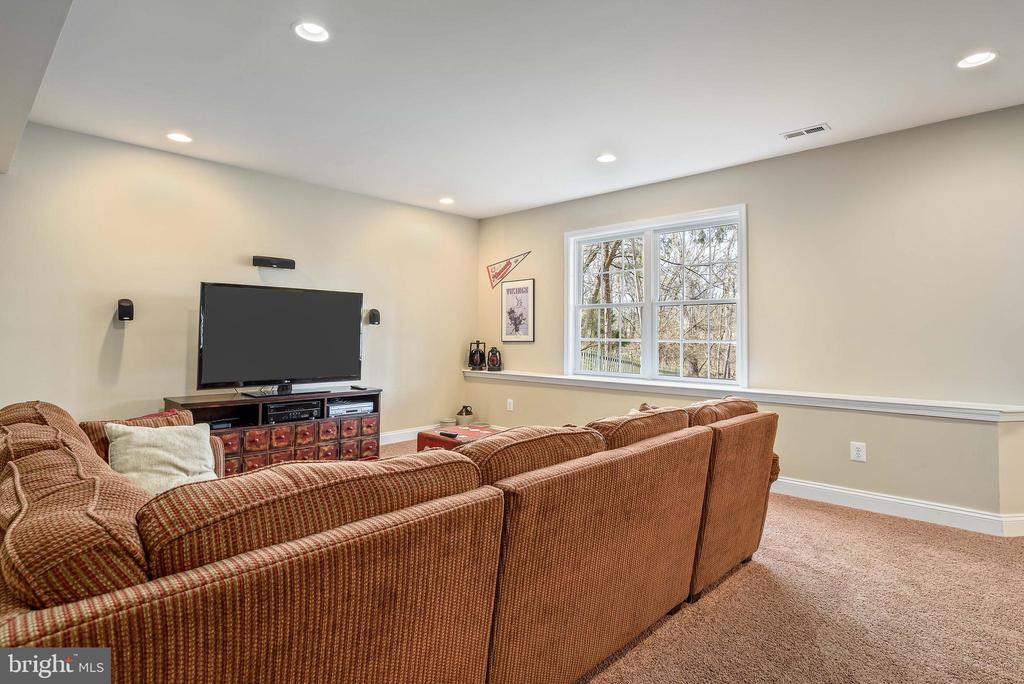 Large space for entertaining, full size windows - 19030 COTON FARM CT, LEESBURG