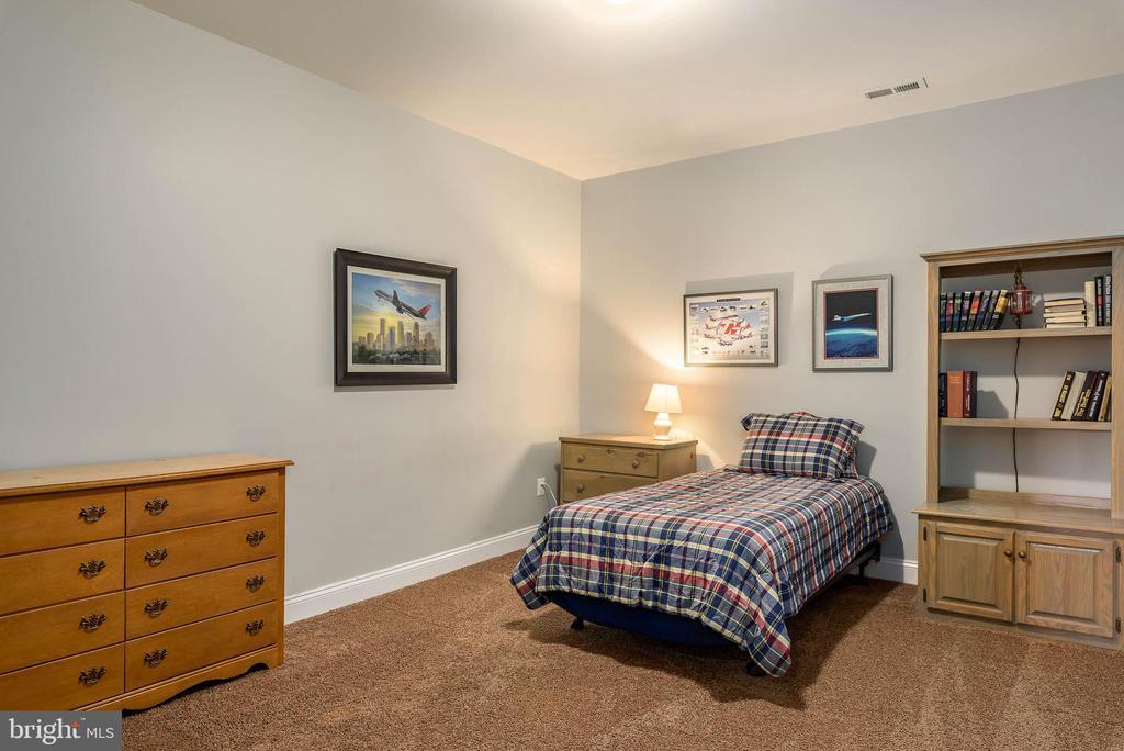 Bonus room on lower level - 19030 COTON FARM CT, LEESBURG