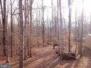 This is your wooded view from the rear deck - 21 CARDINAL DR, FREDERICKSBURG
