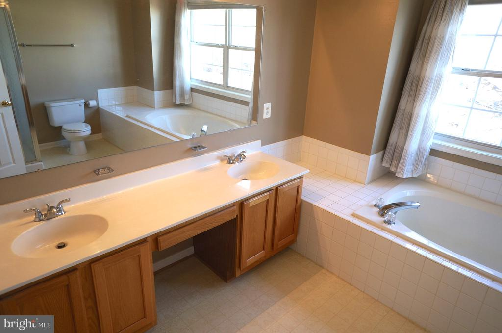 Owner's Bath with Vaulted Ceiling - 22 LAKESIDE DR, STAFFORD