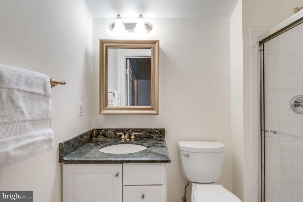 Guest bedroom private bath - 18403 KINGSMILL ST, LEESBURG