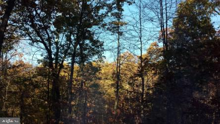 Land for Sale at Leafy Hollow Ln Berkeley Springs, West Virginia 25411 United States