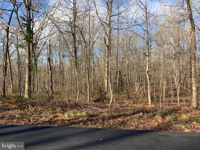 Land for Sale at Thunder Rd Front Royal, Virginia 22630 United States