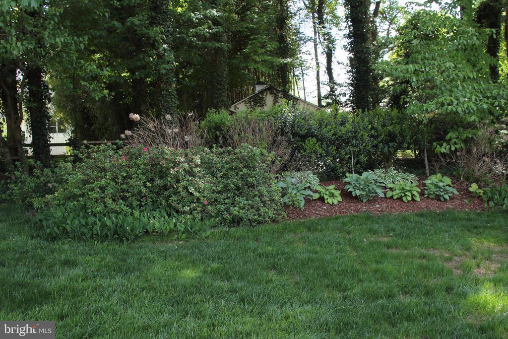 a shade garden - 9097 WEXFORD DR, VIENNA