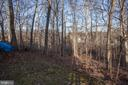 Wooded Back Yard - 14104 ROCK CANYON DR, CENTREVILLE