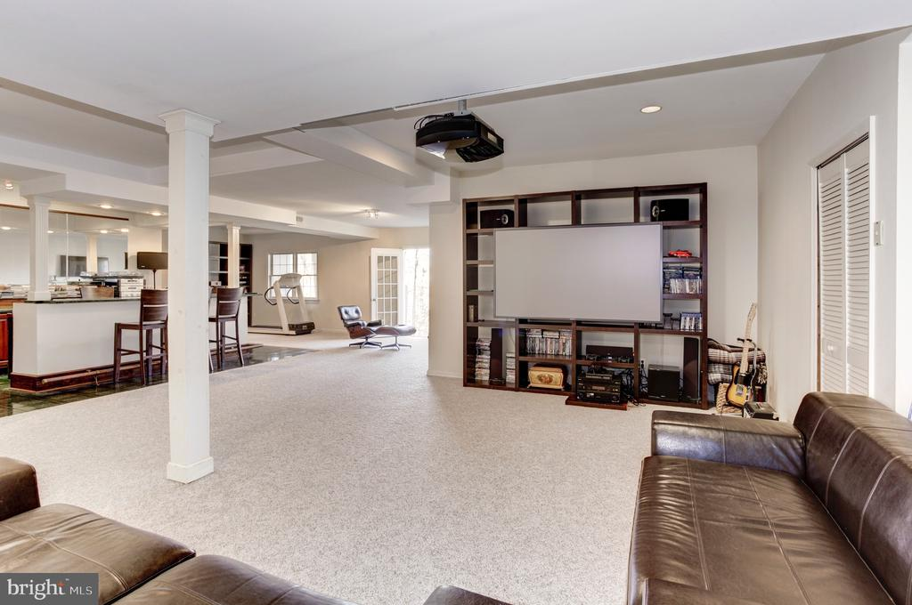 Lower Level Rec Room - 14104 ROCK CANYON DR, CENTREVILLE