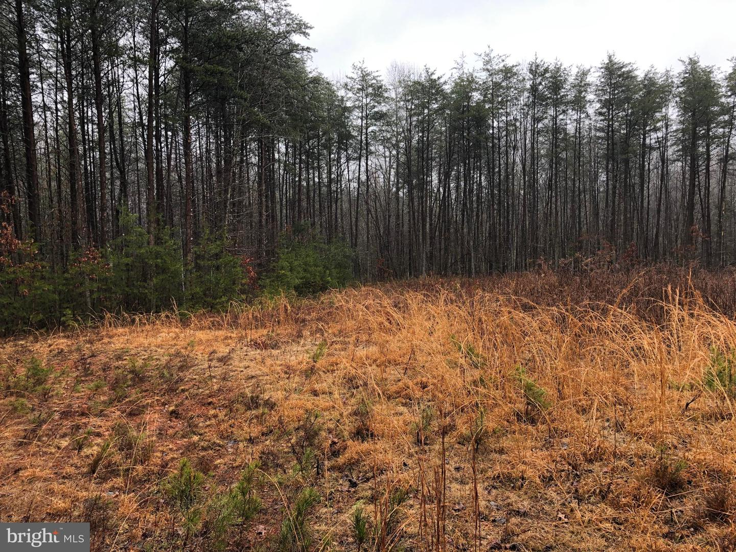 Land for Sale at 2447 Eddies Walk Way Unionville, Virginia 22567 United States