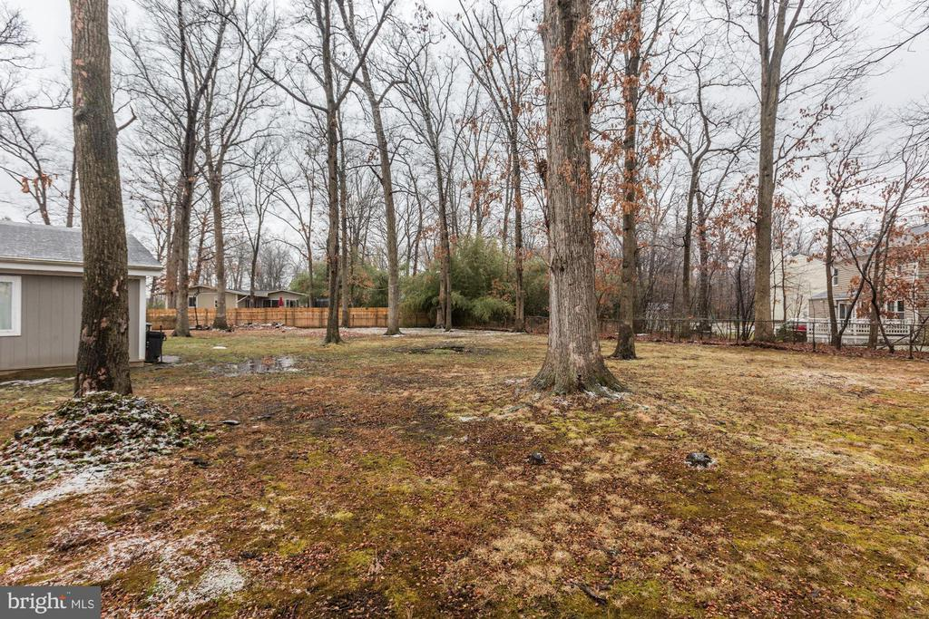 Private lot backing to trees - 501 BOWERS LN, HERNDON
