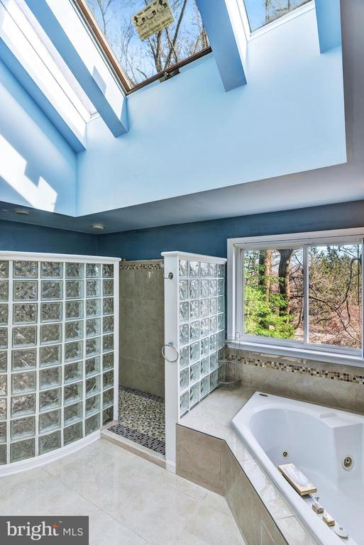 Skylights in Master Bath Ceiling - 2301 TWIN VALLEY LN, SILVER SPRING