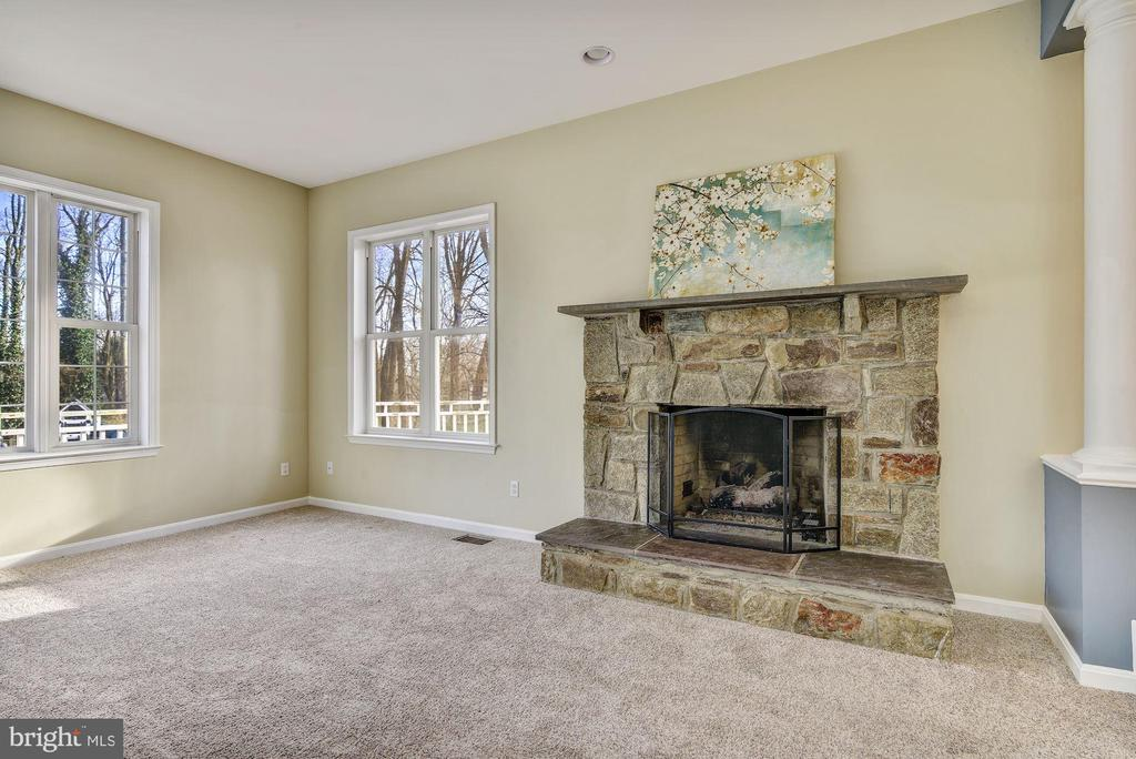 Stone Wood-burning Fireplace - 2301 TWIN VALLEY LN, SILVER SPRING