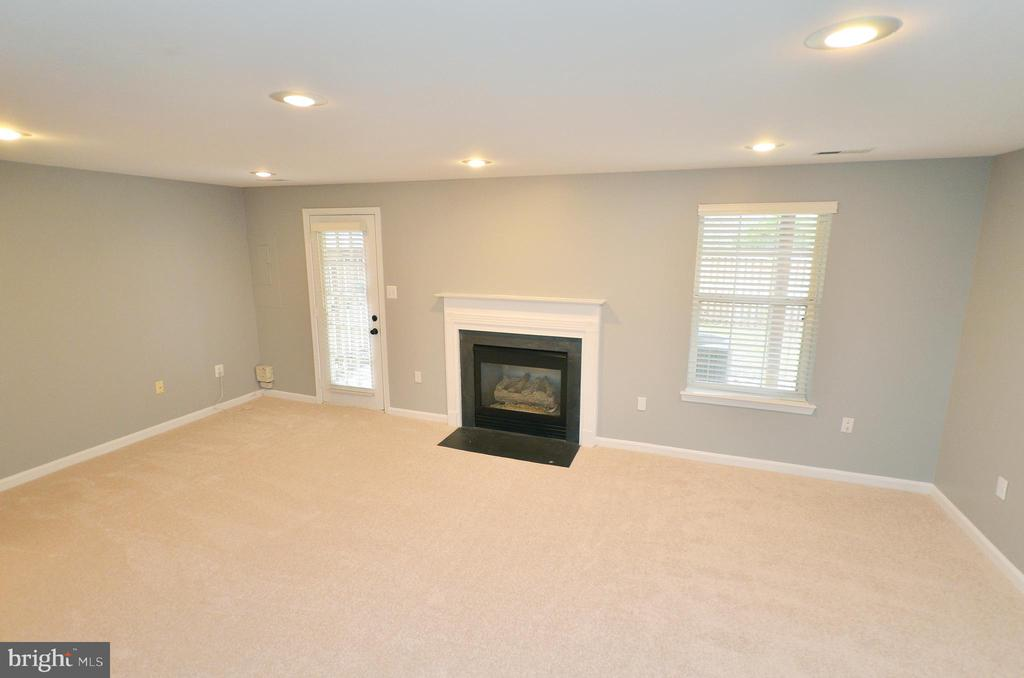 Walkout Level Rec Room - 21563 BANKBARN TER, BROADLANDS