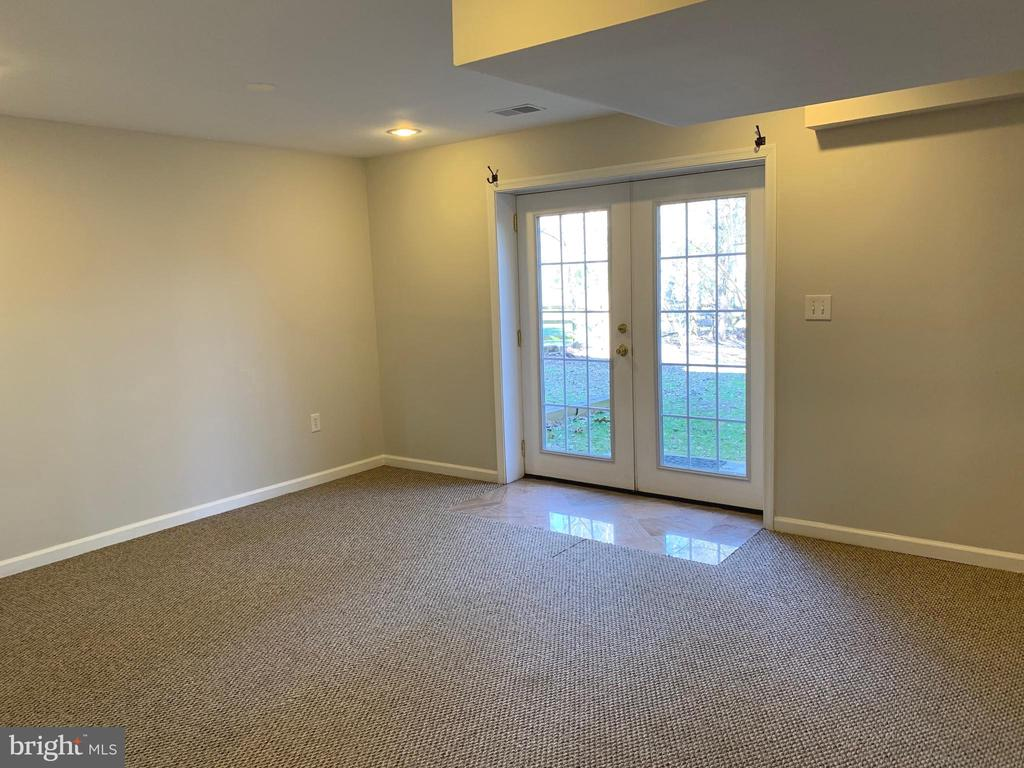 Rec room - Walk Out Level - 11206 BRADBURY LN, RESTON