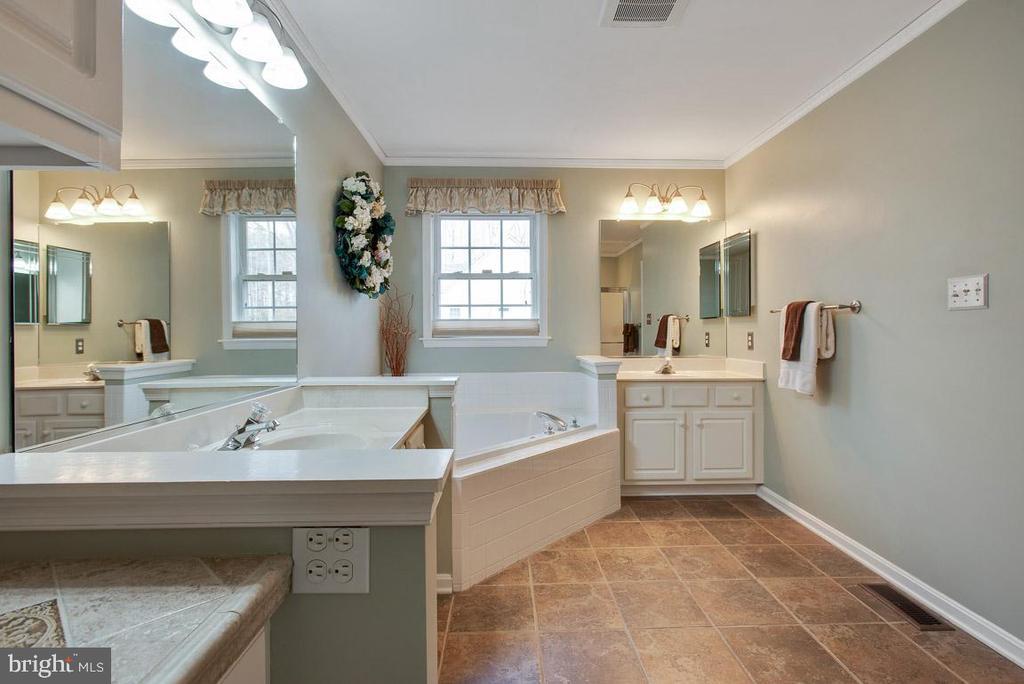 Master bath has plenty or natural light - 201 MONUMENT RD, LOCUST GROVE