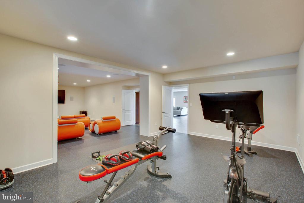 Exercise room - 3429 WAPLES GLEN CT, OAKTON
