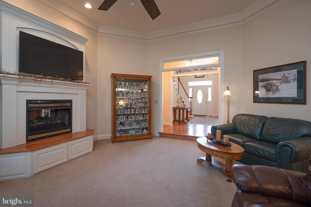 Another View of Family Room - 10515 WILDBROOKE CT, SPOTSYLVANIA