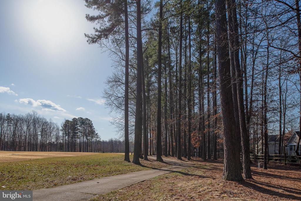 Let's Hit the Golf Course! - 10515 WILDBROOKE CT, SPOTSYLVANIA