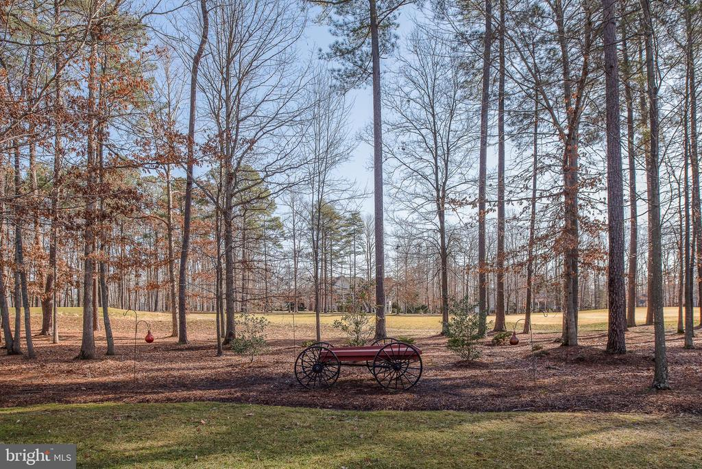 Trees offer Privacy from the Golfers View - 10515 WILDBROOKE CT, SPOTSYLVANIA