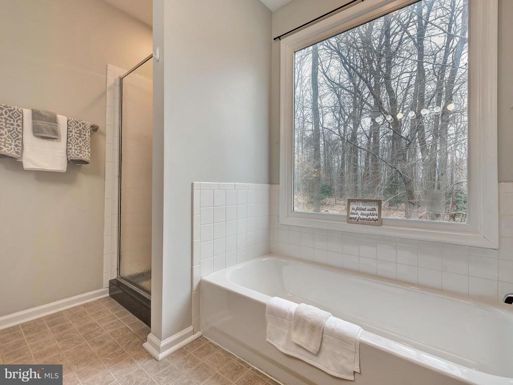 Separate Shower & Tub in Master Bath - 6012 CREST PARK DR, RIVERDALE