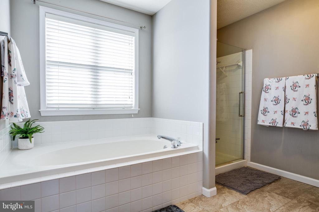 Separate tub and shower. - 40 NORTHAMPTON BLVD, STAFFORD