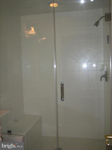 Full Bath with Kohler Steam Shower in Basement - 24907 PINEBROOK RD, CHANTILLY