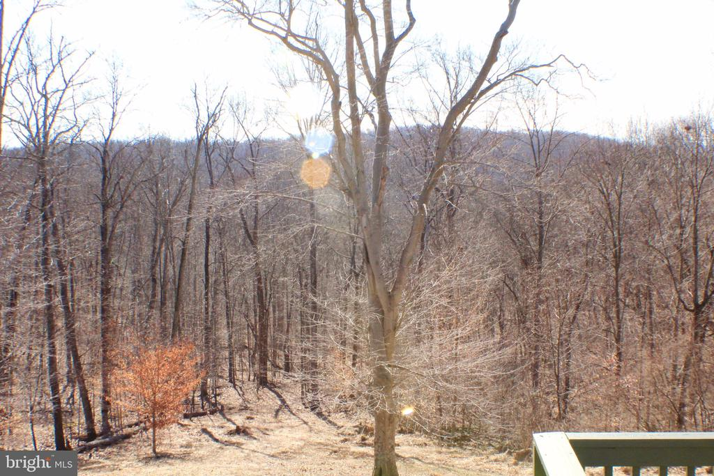VIEW OF BACK DECK - 20970 STEPTOE HILL RD, MIDDLEBURG