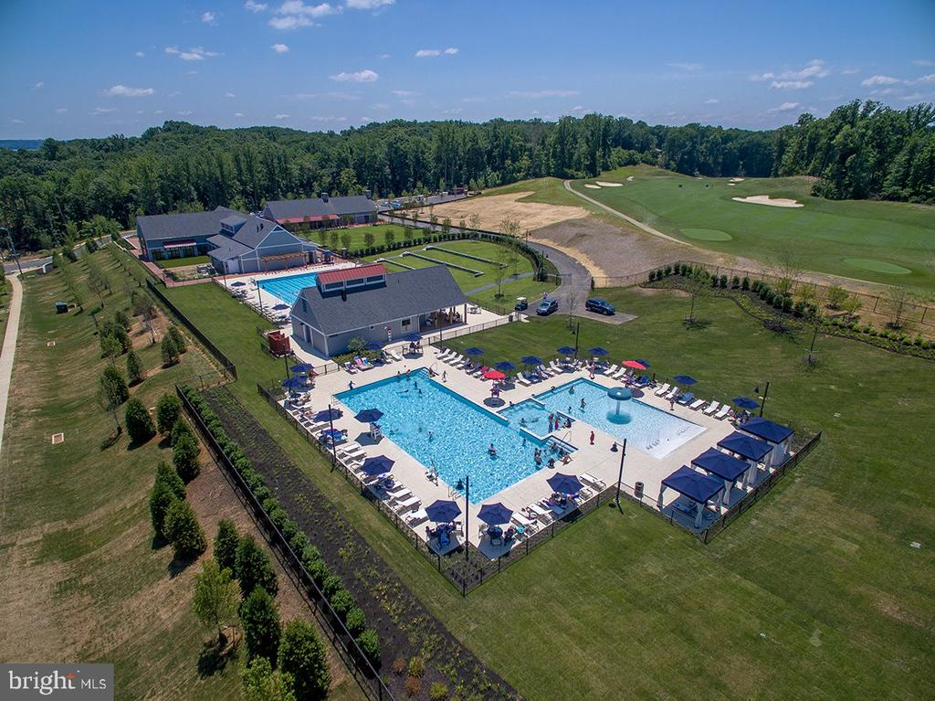 Community Pool - 2565 PASSIONFLOWER CT, DUMFRIES
