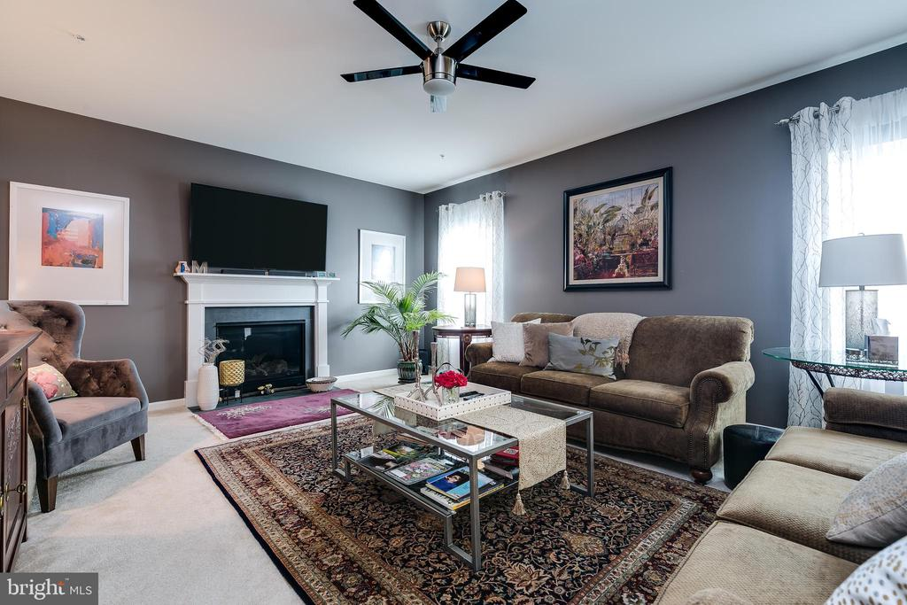 Family room, open to kitchen and morning room - 2565 PASSIONFLOWER CT, DUMFRIES