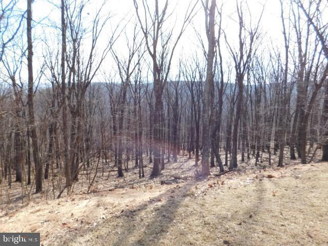 土地,用地 为 销售 在 New Creek, 西弗吉尼亚州 26743 美国