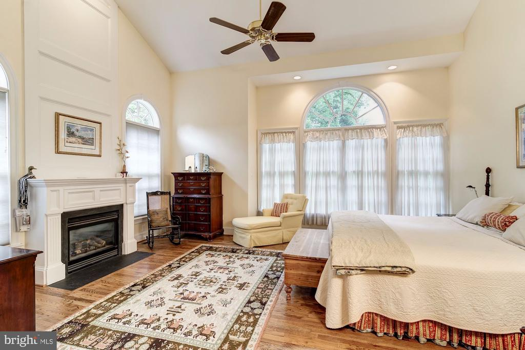 Vaulted Main level Master Suite w gas fireplace - 3013 N DICKERSON ST, ARLINGTON