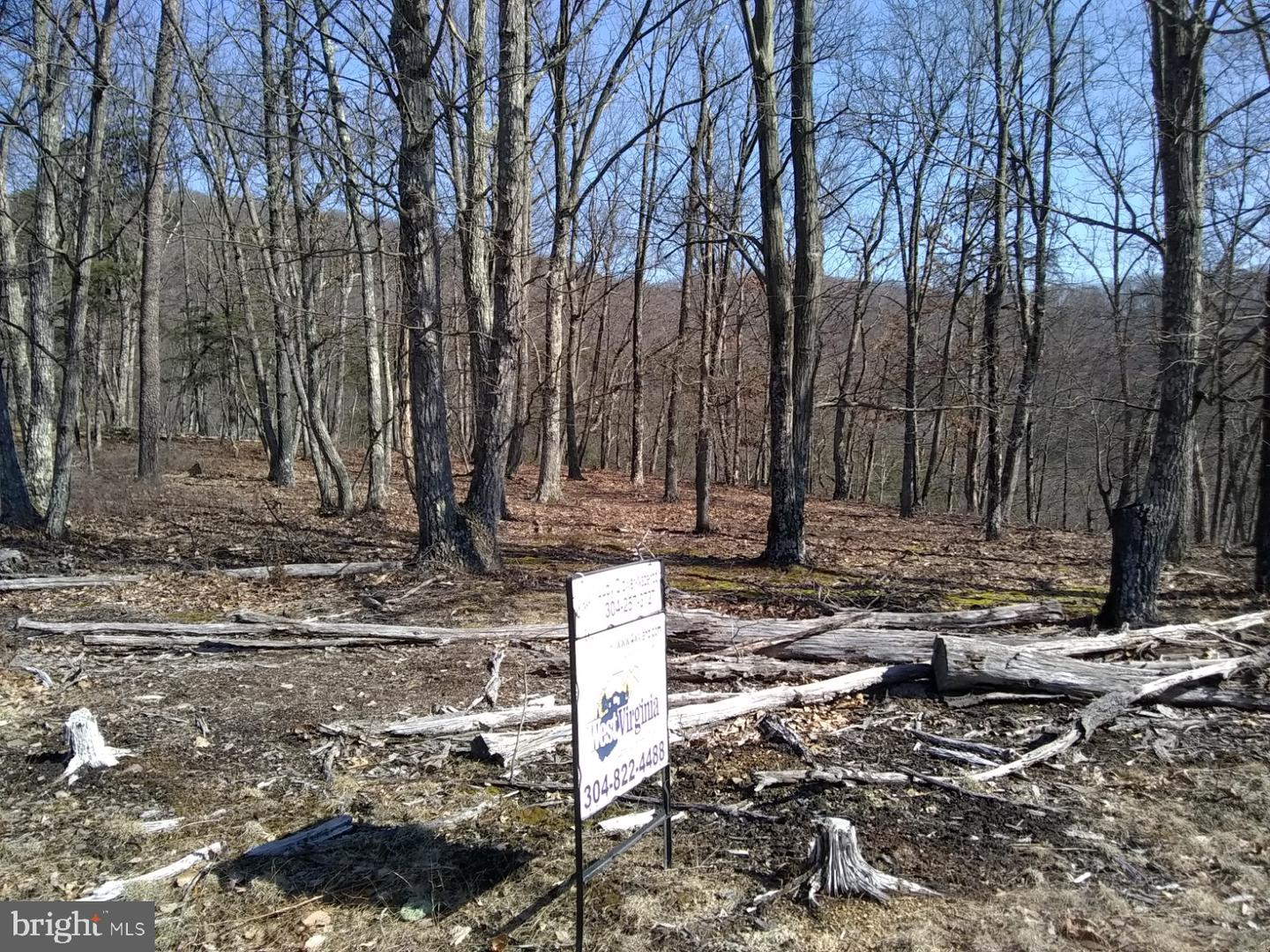 Land for Sale at Bluffs Trail Dr Bluffs Trail Dr Springfield, West Virginia 26763 United States