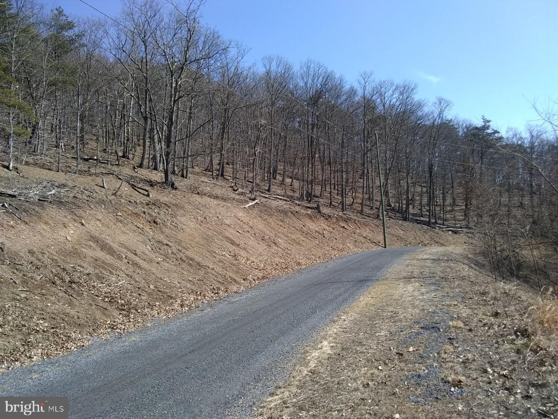 土地,用地 为 销售 在 Springfield, 西弗吉尼亚州 26763 美国