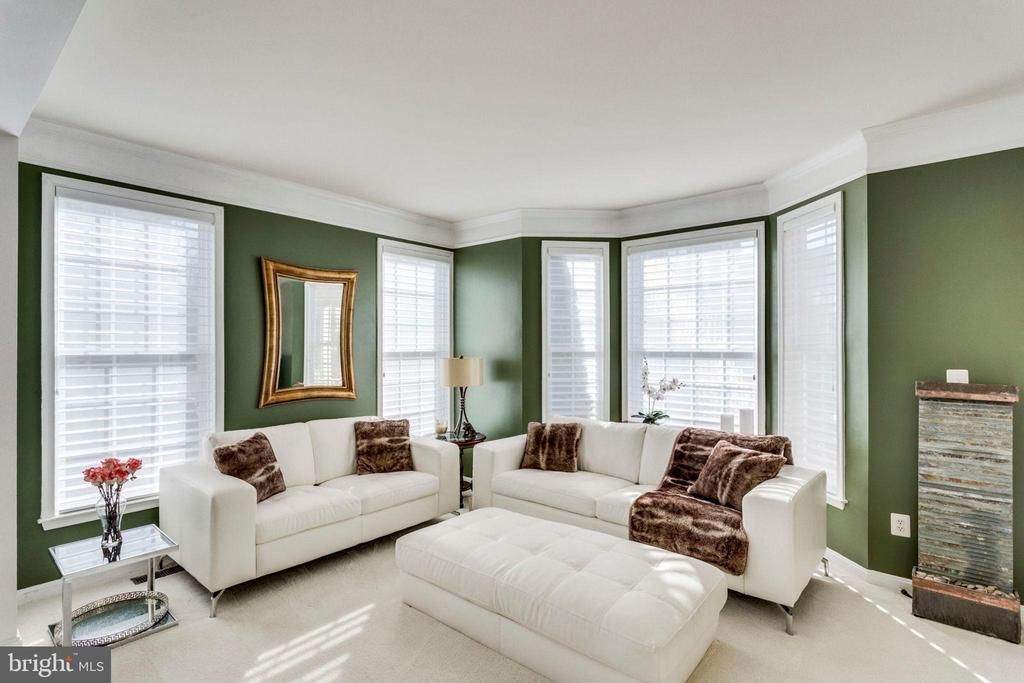 Light-filled Living Room to welcome your guests - 43328 MARKHAM PL, ASHBURN