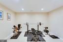 Bonus Room on LL - possible 5th bedroom - 43328 MARKHAM PL, ASHBURN
