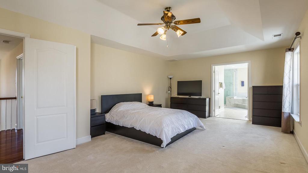 Master Bedroom - 21337 CLAPPERTOWN DR, ASHBURN