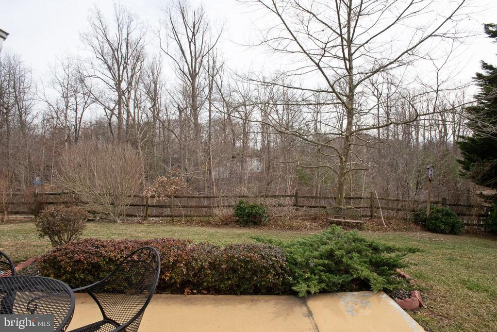 Backyard patio - 11731 LEGACY WOODS DR, FREDERICKSBURG