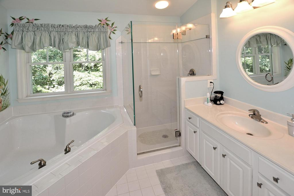 Master Bedroom with Dual Sinks & Large Soaking Tub - 2524 BRENTON POINT DRIVE, RESTON