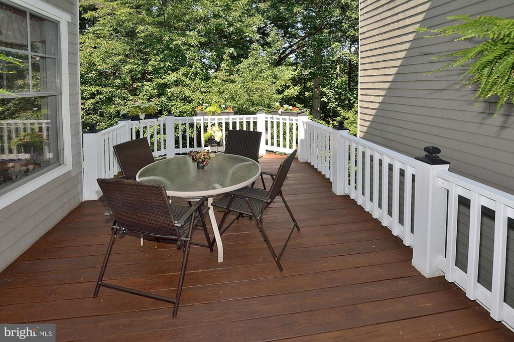 Plenty of room for company & cookouts - 2524 BRENTON POINT DRIVE, RESTON