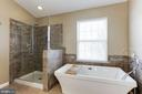New Extended Frameless Shower and Freestanding Tub - 43127 LLEWELLYN CT, LEESBURG