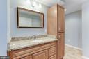 Improved Full Bathroom in Basement - 43127 LLEWELLYN CT, LEESBURG