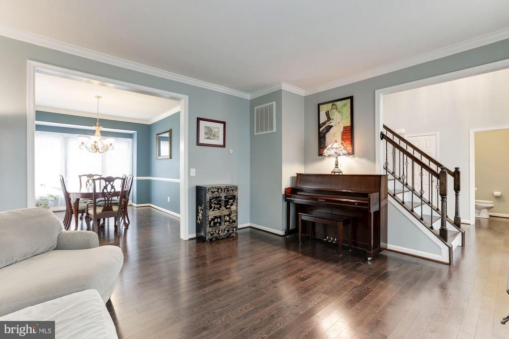 Living Room - 43127 LLEWELLYN CT, LEESBURG