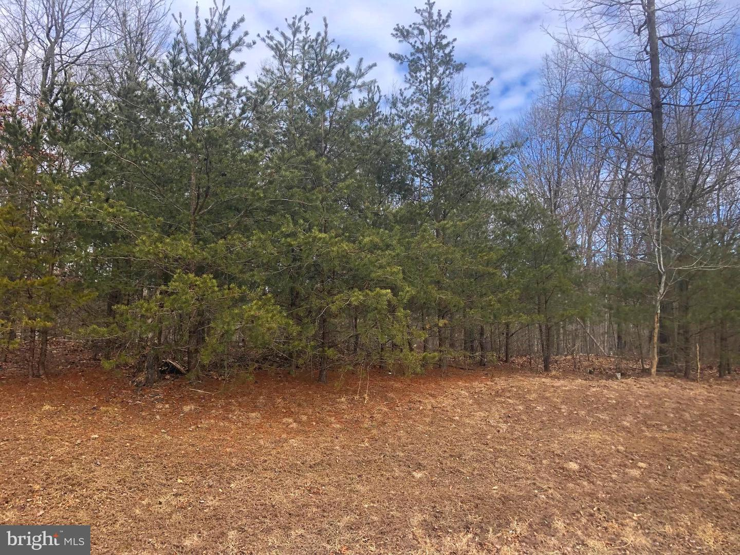 Land for Sale at Lot 12 Cielo Ln Berkeley Springs, West Virginia 25411 United States