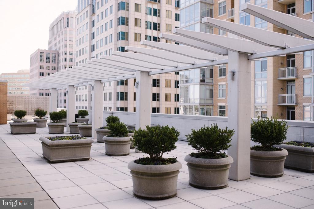 Roof Top Terrace available for Entertaining - 12025 NEW DOMINION PKWY #313, RESTON