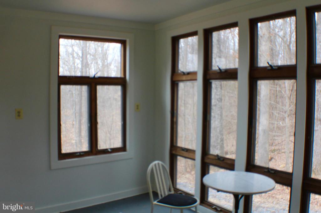 INSIDE VIEW FROM STUDIO - 20970 STEPTOE HILL RD, MIDDLEBURG