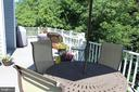 Large Trex Deck Backing to Trees/Woods in Spring! - 43328 MARKHAM PL, ASHBURN