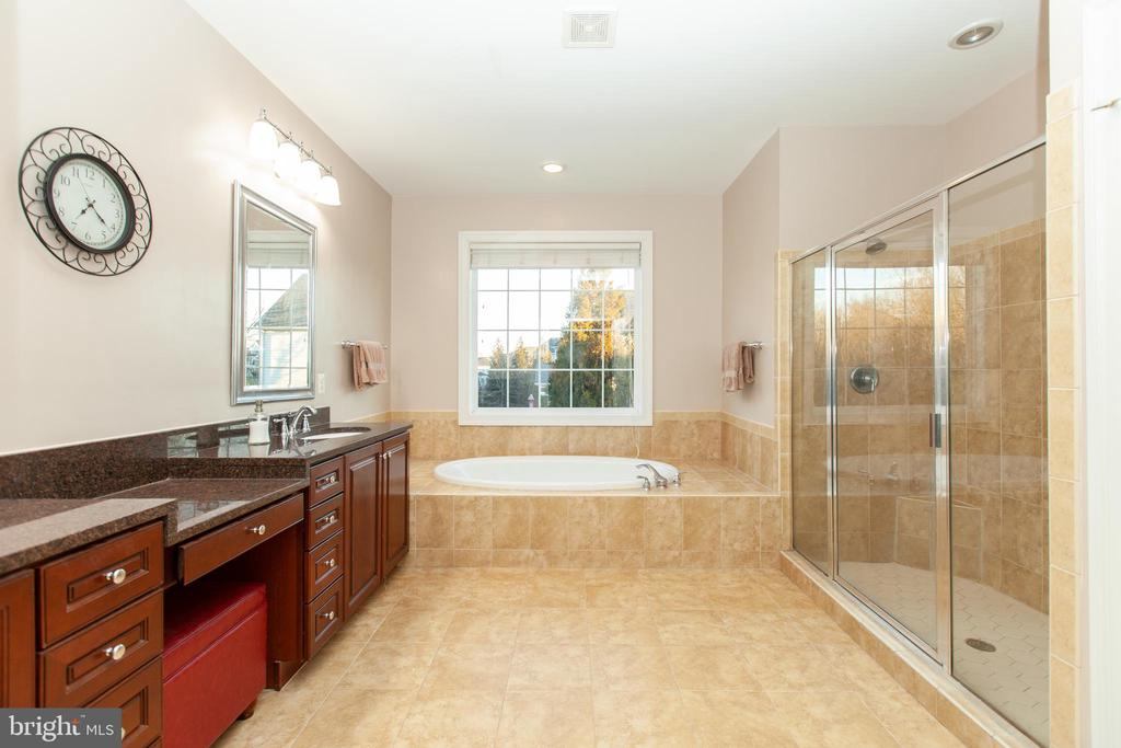 Master Suite Stunning Granite - 43341 CEDAR POND PL, CHANTILLY