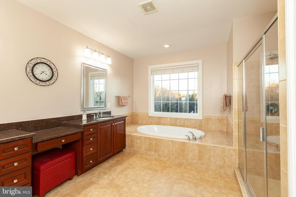 Master Suite - Spacious Bath - 43341 CEDAR POND PL, CHANTILLY