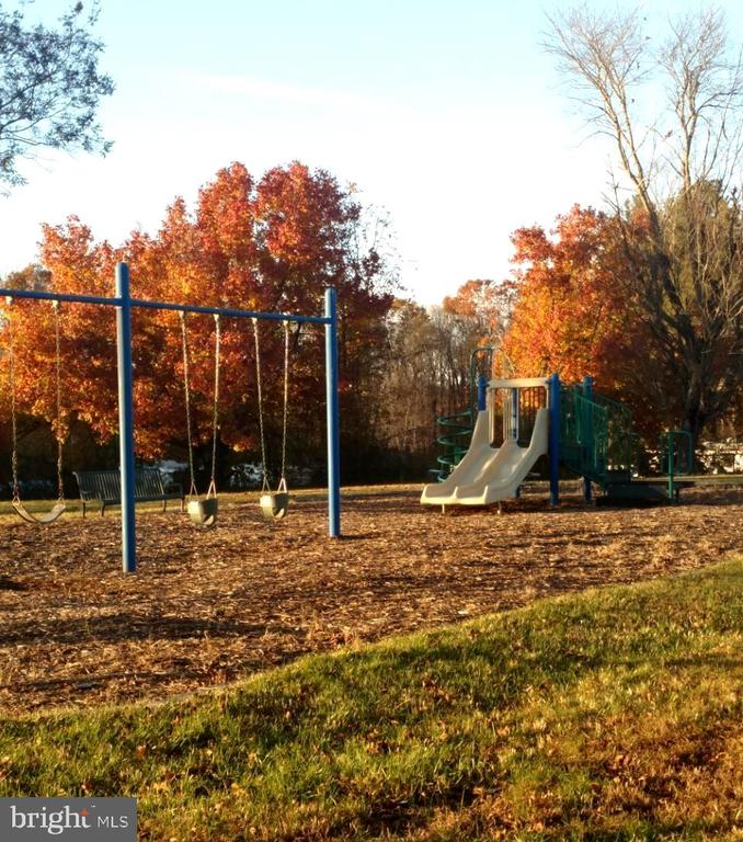 Play Area with Tot Lot - 12157 CANTERBURY CT, KING GEORGE