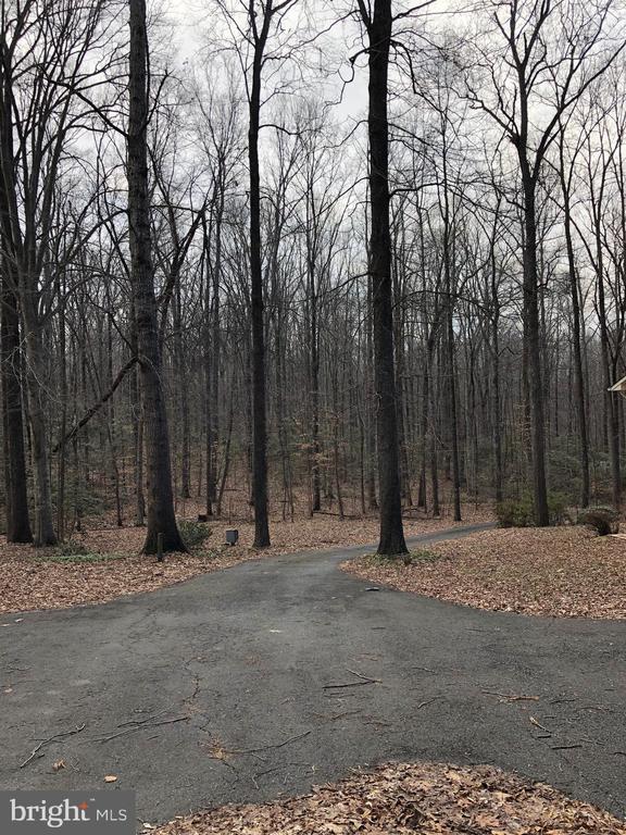 Long winding driveway - 8809 MILLWOOD DR, SPOTSYLVANIA
