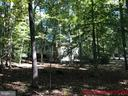 When the leaves are on the trees... - 8809 MILLWOOD DR, SPOTSYLVANIA
