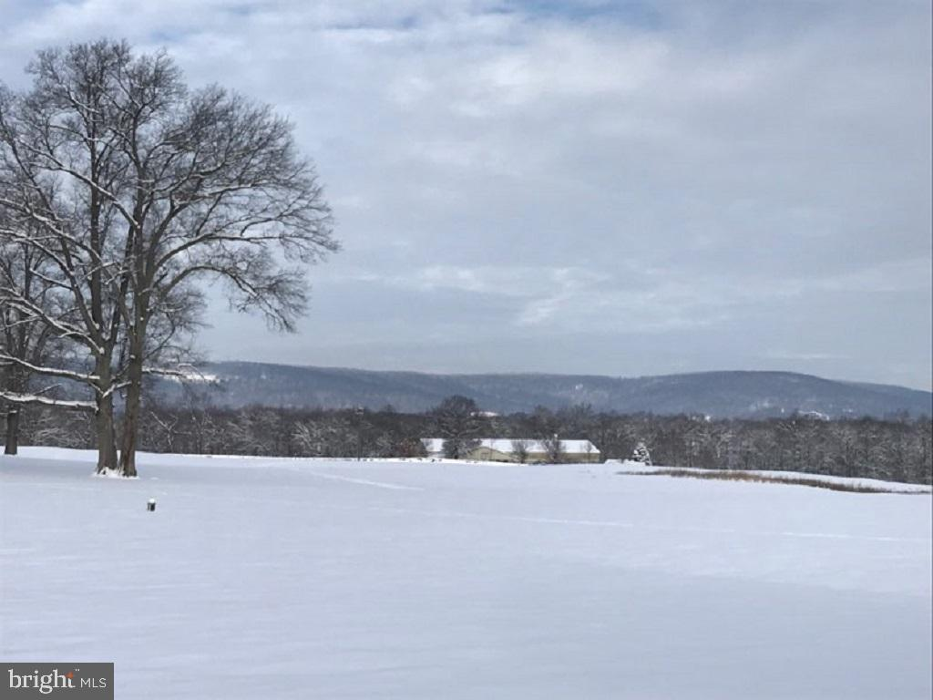 Snow Capped Mountain Views - 21562 GREENGARDEN RD, UPPERVILLE